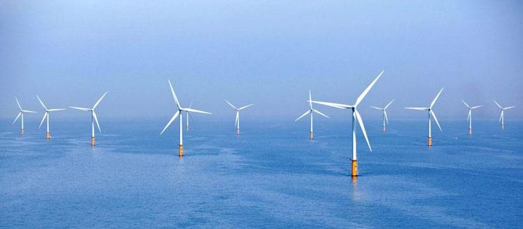 Brighton wind farm tours