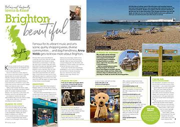 Brighton July 2020 - dog friendly brighton